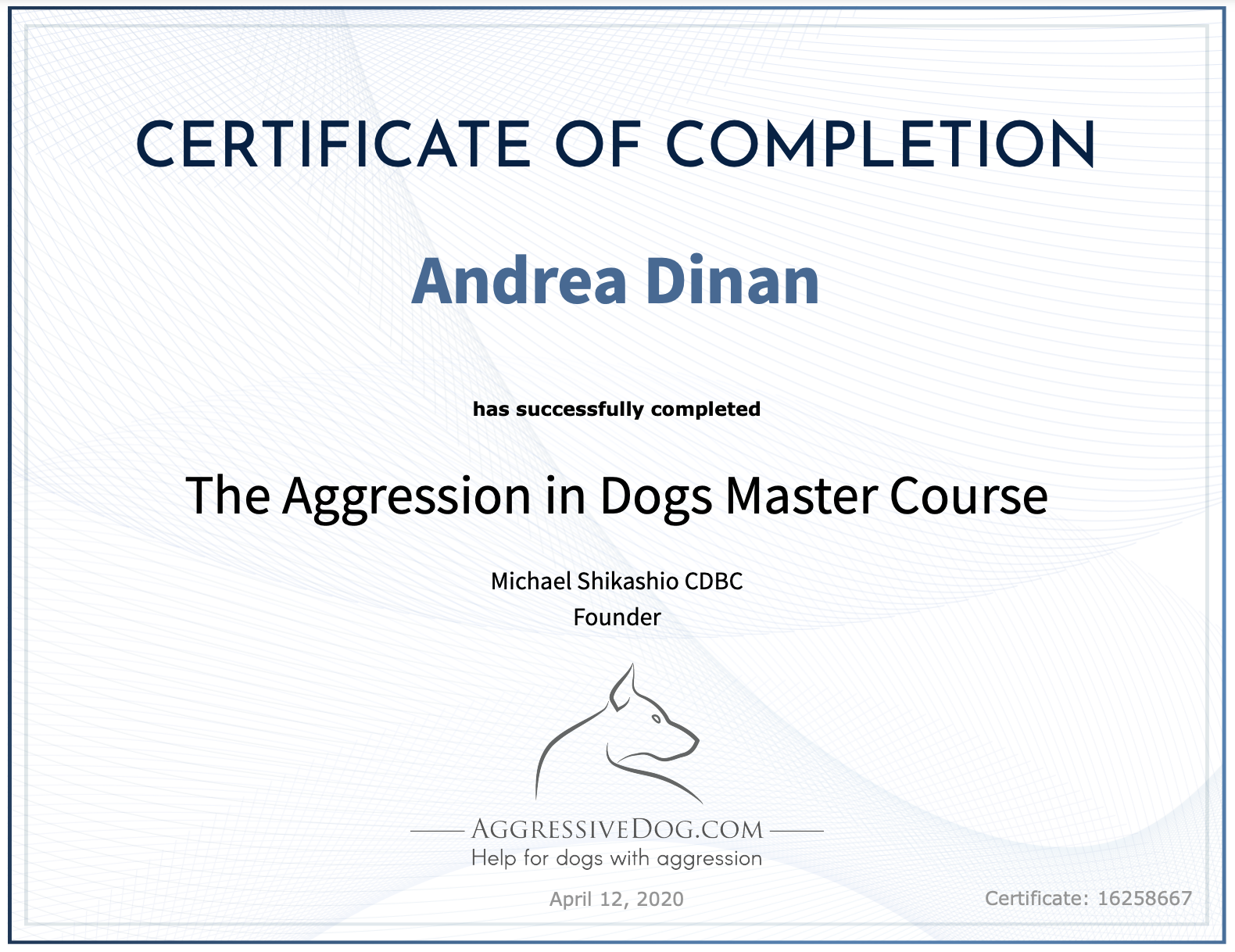 Aggression in Dogs Master Course - Andrea Dinan